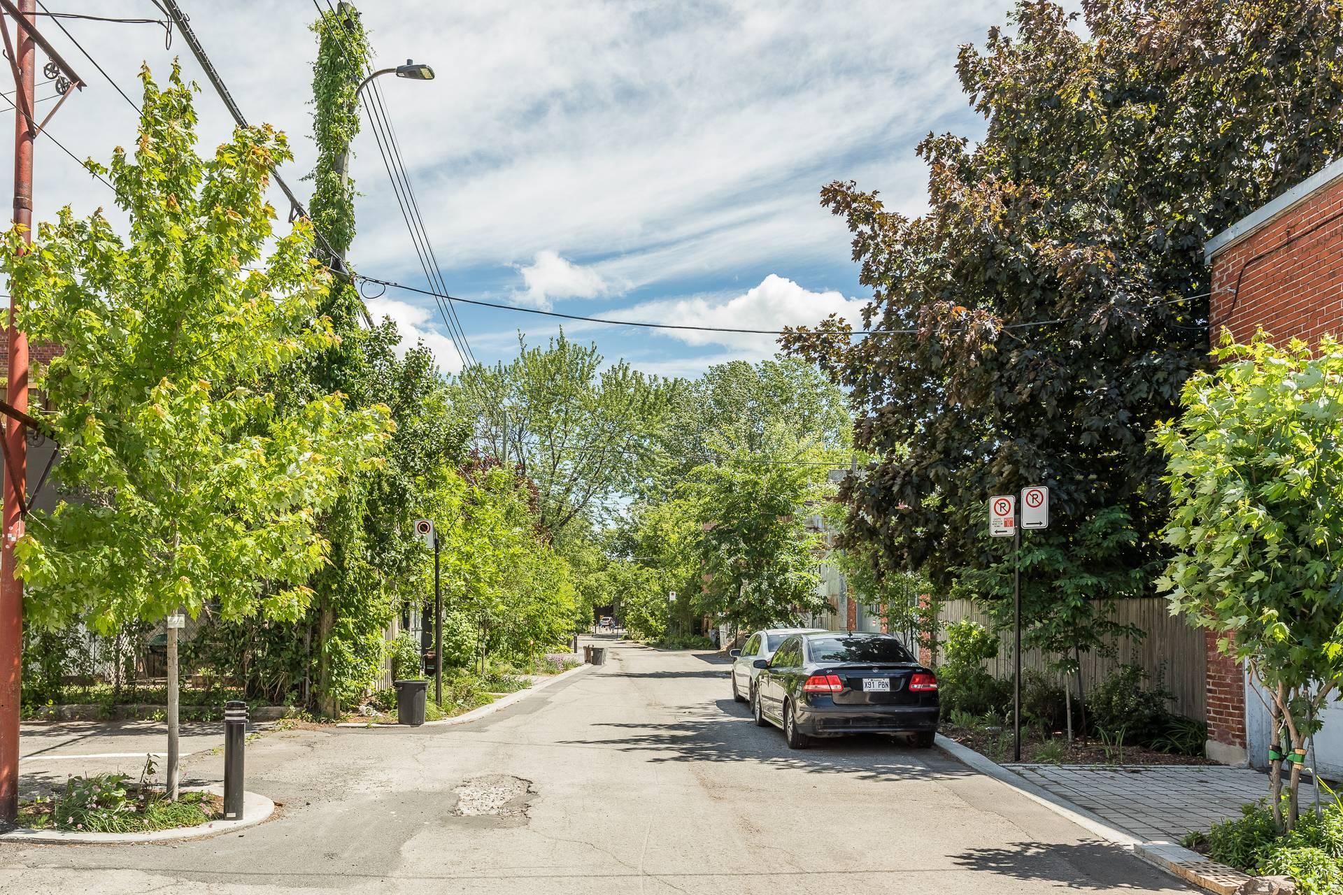 Street Condo Montréal (Le Plateau-Mont-Royal)