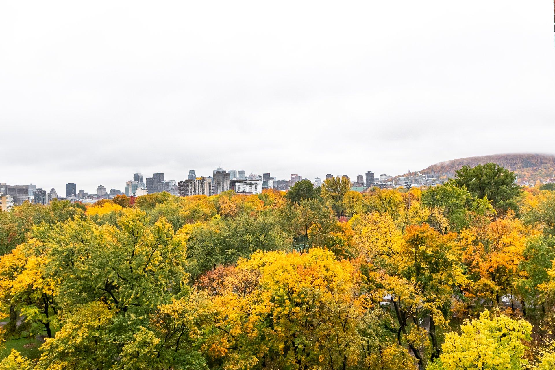 View Condo Montréal (Le Plateau-Mont-Royal)