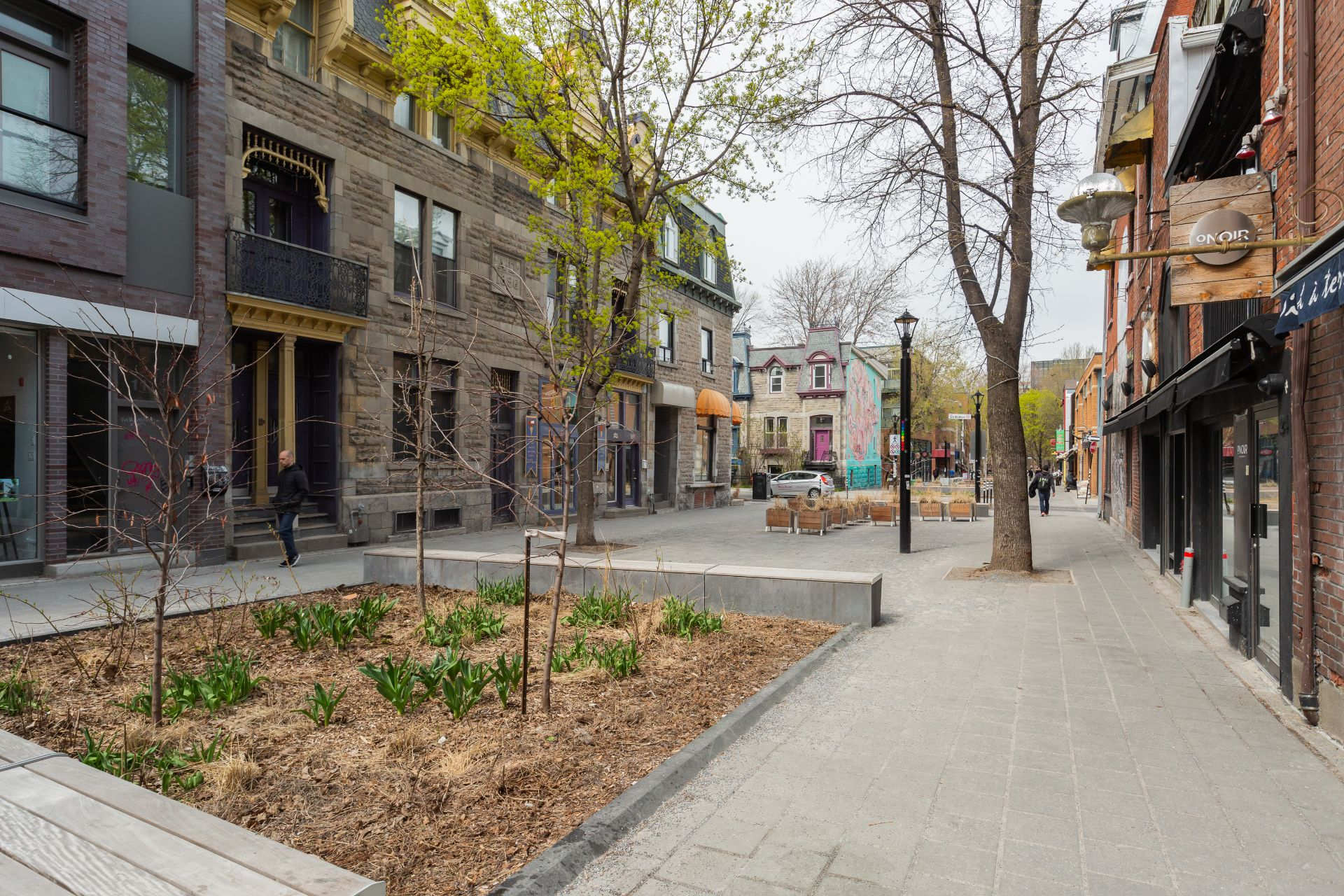 Rue Condo Montréal (Le Plateau-Mont-Royal)